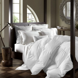 Chăn lông vũ 40 oz Oasis Feather/Down 100TC Twin Duvet