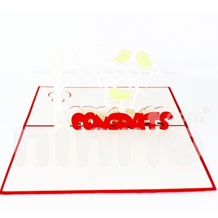 CONGRATULATIONS BOY-3D CARD/POPUP/CONGRATULATIONS CARD