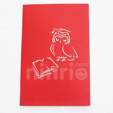 OWL GRADUATION-3D CARD/POPUP/CONGRATULATIONS CARD/ GREETING CARD