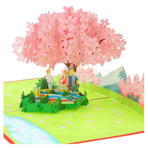 PICNIC 3D POP UP CARD GREETING CARD FATHER'S DAY CARD