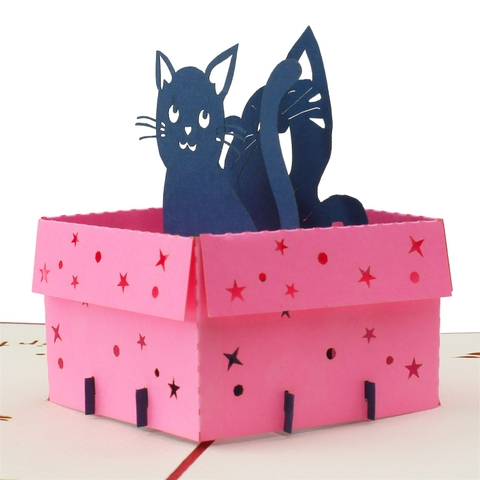 CAT IN BOX-3D CARD/POPUP/BIRTHDAY CARD/GREETING CARD/ CONGRATULATION CARD