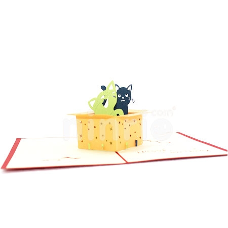 CAT IN BOX-3D CARD/POPUP/BIRTHDAY CARD
