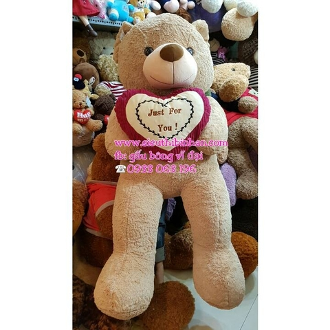GẤU BÔNG TEDDY ÔM TIM JUST FOR YOU