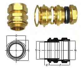 ỐC SIẾT CÁP CX (INDUSTRIAL CABLE GLANDS)