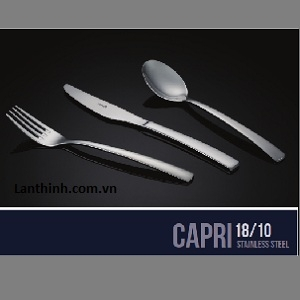 CAPRI 18/10 Stainless Steel