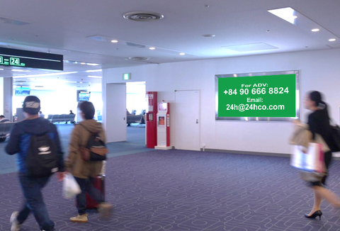 Light Box Advertising - Domestic Arrival
