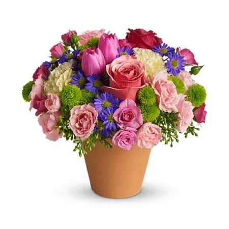 Aspire Pink Rose Spring Bouquet - SF115