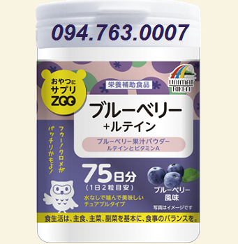Nutrition supplement food with blueberry flavor