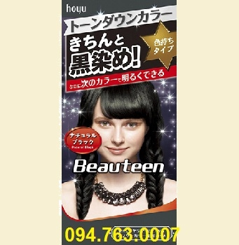 BEAUTEEN Hair Dyer - Black