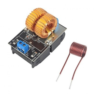 12V ZVS Induction Heating Module