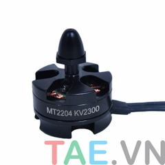 Motor Brushless MT2204 KV2300