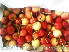 Cherry vàng New Zealand