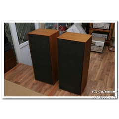 Loa Celestion Dittion 25