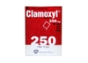 Clamoxyl 250mg