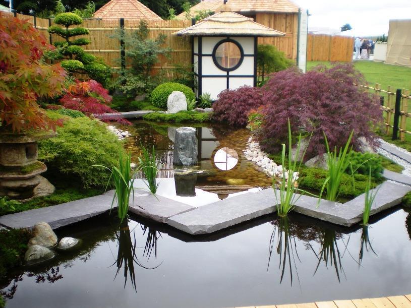 beautiful japanese home garden design image - Mở bán lô cá Koi F1 Việt Nam - Luna Koi Farm