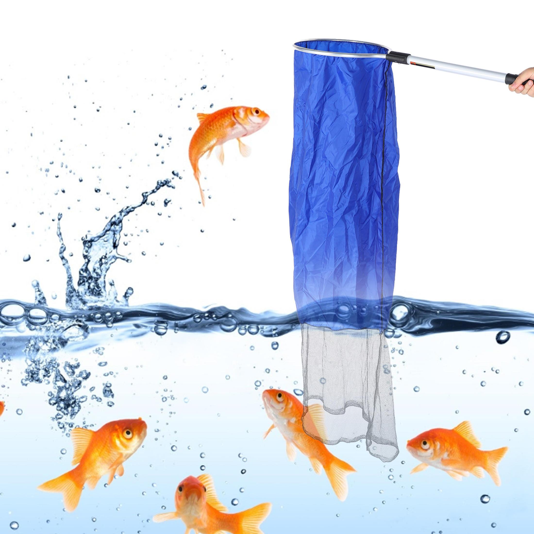 Vợt ống không đáy, giữ nước chuyên bắt cá Koi
