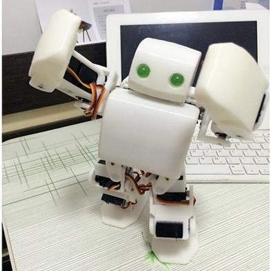 robot-nguoi-plen-2