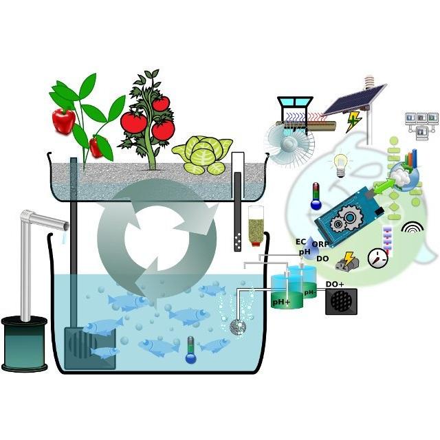 bo-hoc-tap-arduino-aquaponic