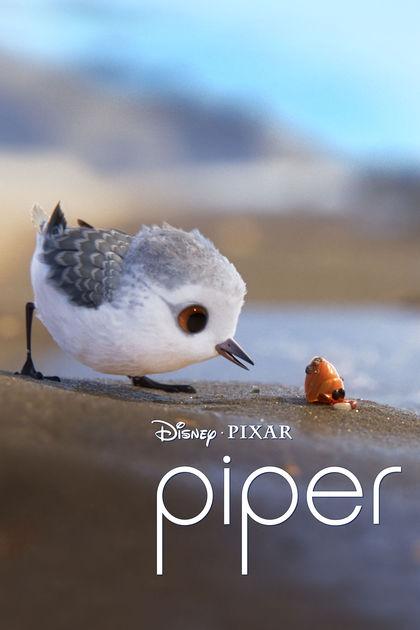6645 - Piper 2016 - Chú Chim Trên Bờ Biển