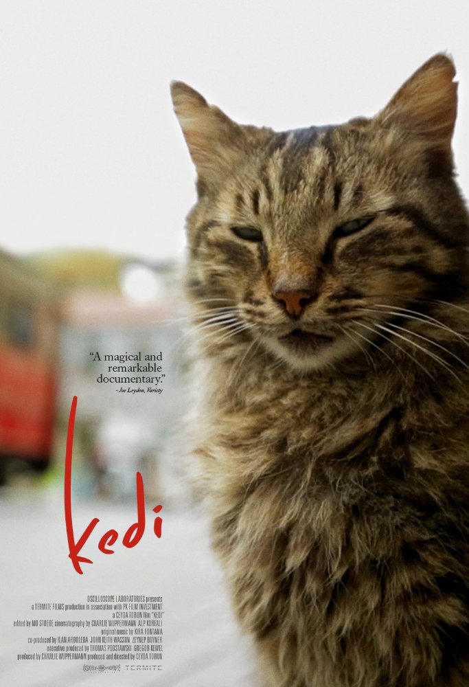 2244 - Kedi - Thế Giới Loài Mèo (2017)