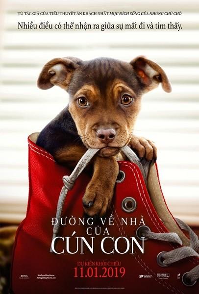 43 - A Dog's Way Home 2019 - Đường Về Nhà Của Cún Con