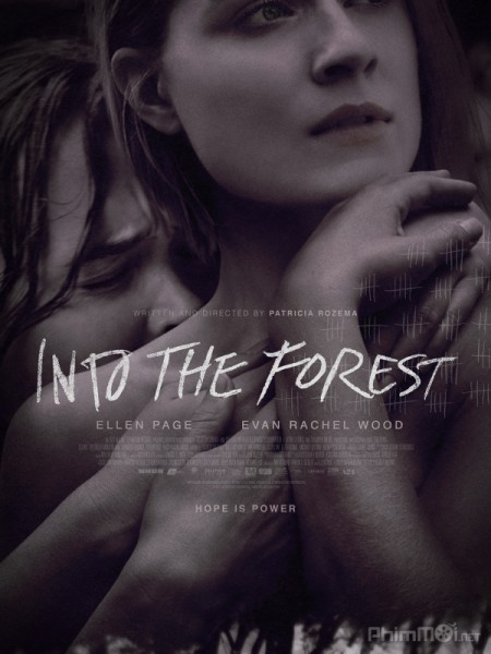 2594 -  Into The Forest - BÊN TRONG KHU RỪNG