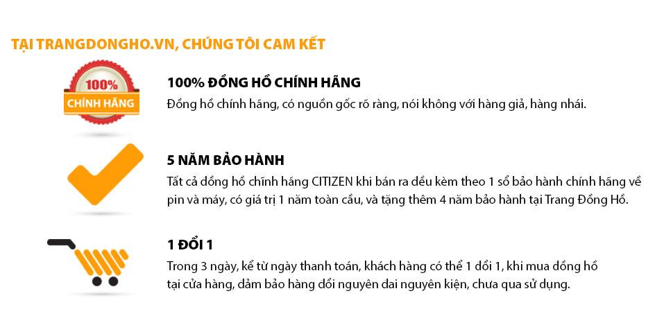 ĐạiLý Đồng Hồ Citizen Tại TPHCM