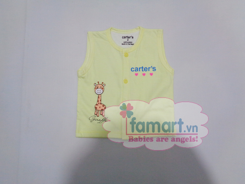ao-dile-cotton-2-lop-carter-1