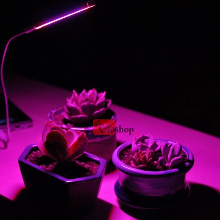 Đèn Led trồng cây trong nhà