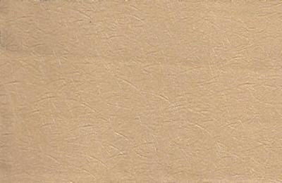 Inox Giả Gỗ: HL-038TM