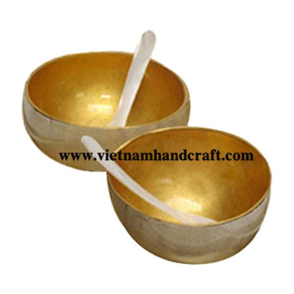 Lacquered coconut shell bowl with mother of pearl spoon