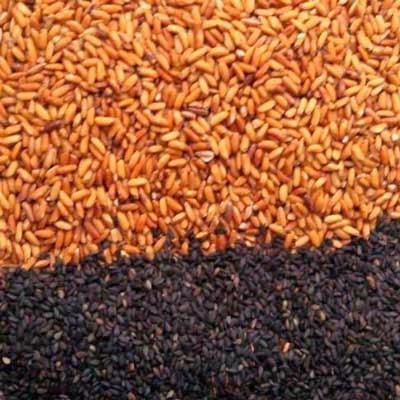 Bột gạo lứt, mè đen, đậu đen xanh lòng