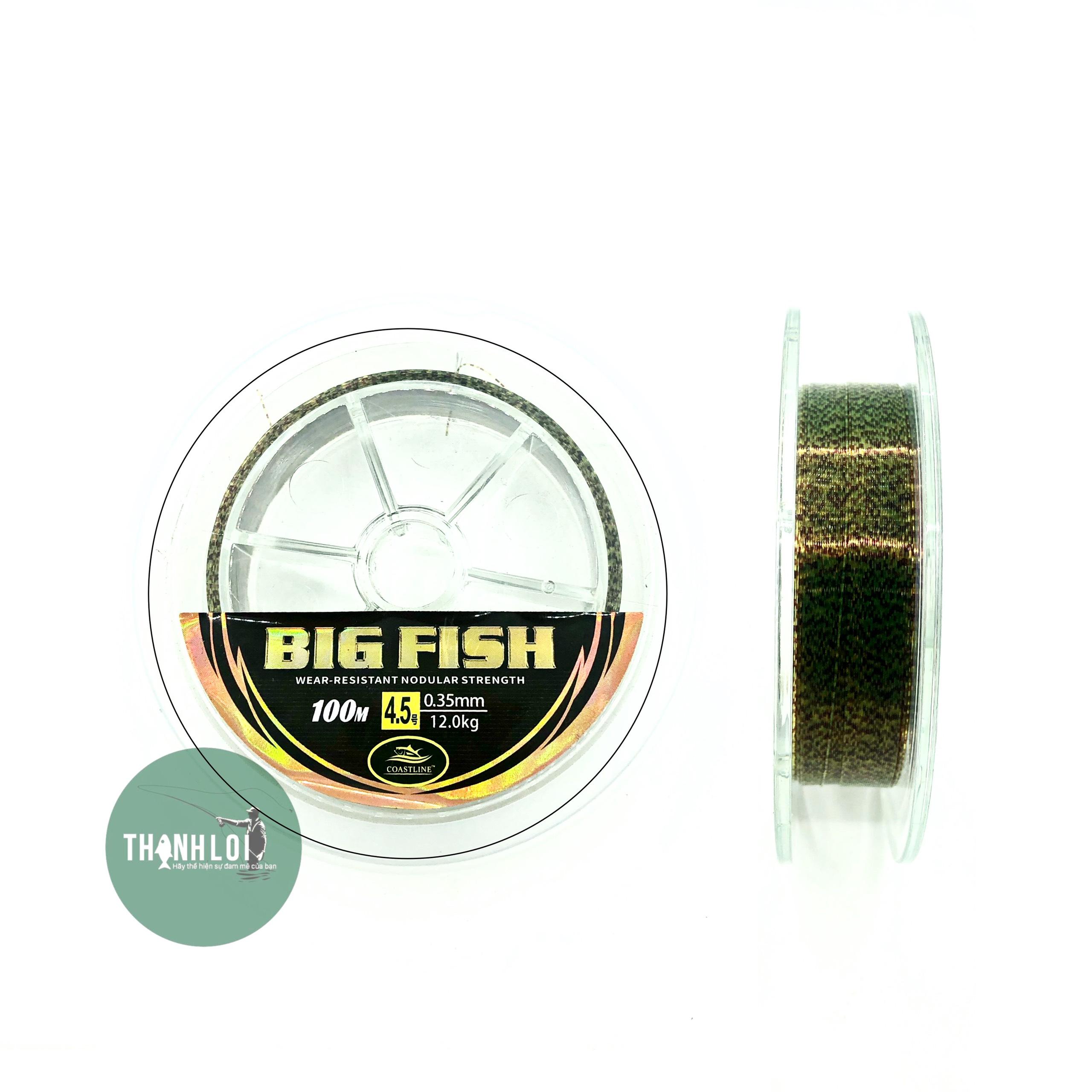 Dây Costline Big Fish 100m