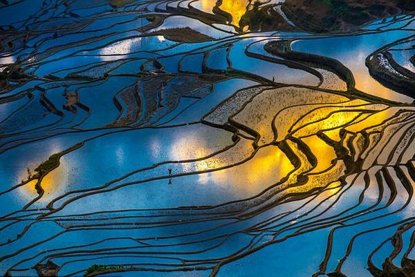 Ruộng bậc thang Nguyên Dương Trung Quốc SCO VIỆT NAM