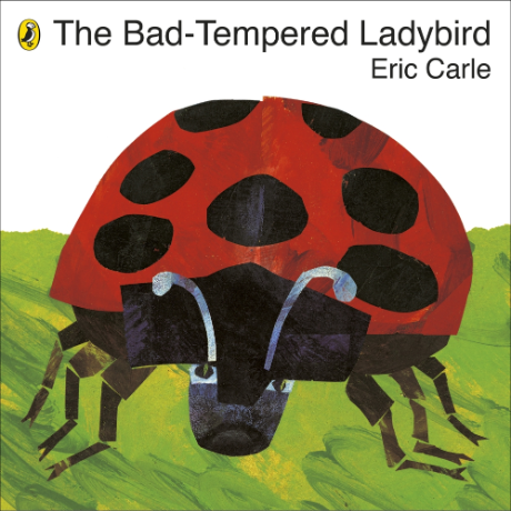 the-bad-tempered-ladybird