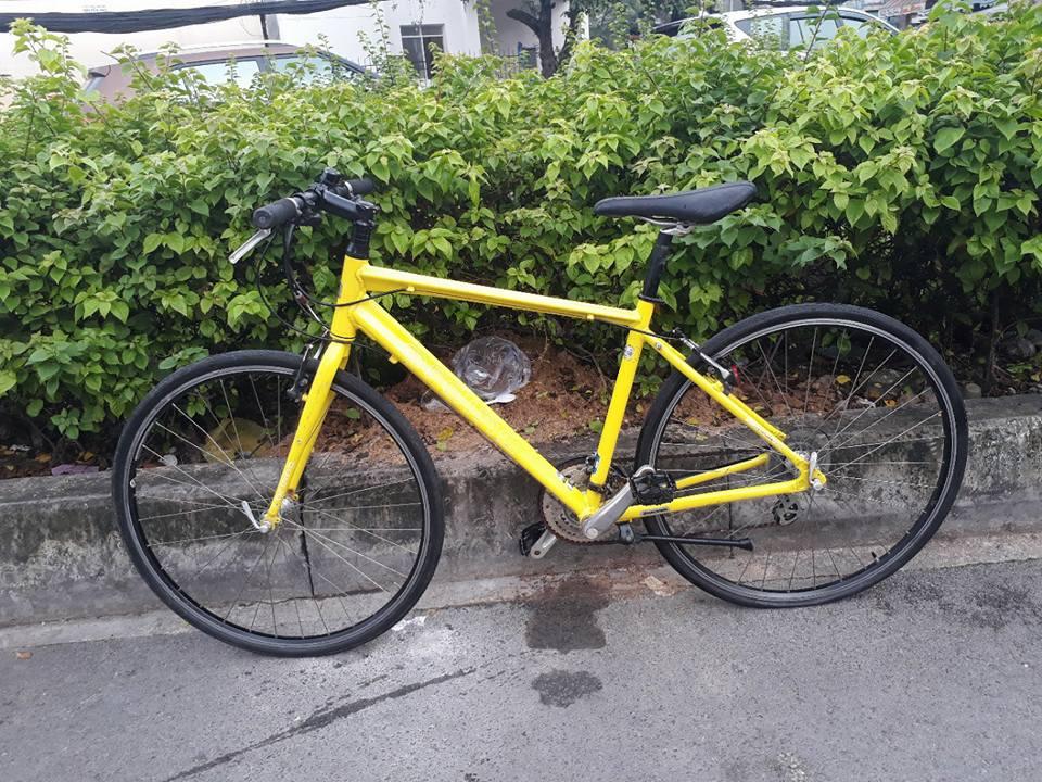 Chuyên cung cấp Xe Đạp Đua,Mtb,Touring...nhập khẩu Châu Âu,xe đạp Nhật - 20
