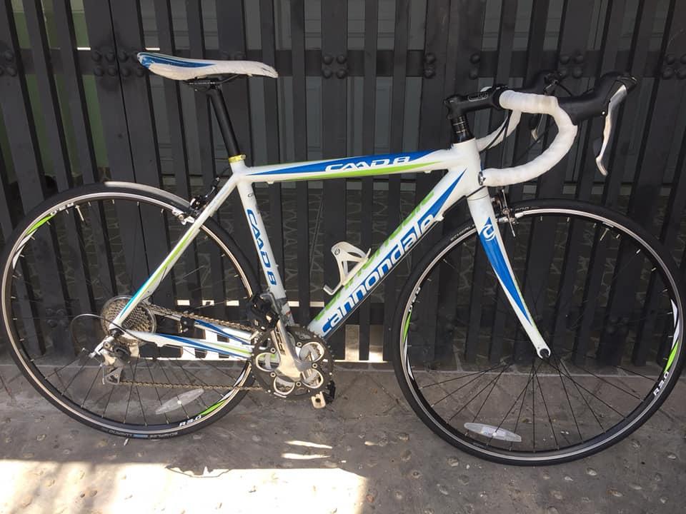 Chuyên cung cấp Xe Đạp Đua,Mtb,Touring...nhập khẩu Châu Âu,xe đạp Nhật - 19