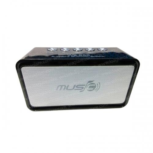 Loa Bluetooth WS-655