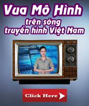 Vua Mô Hình trên sóng truyền hình