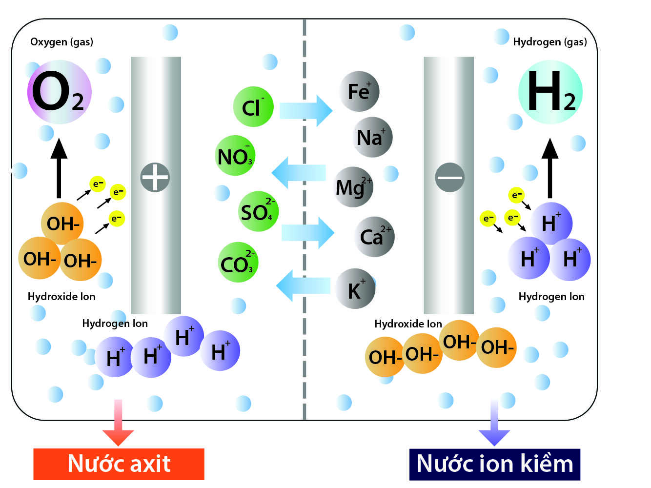 quy trình điện phân nước thành nước ion kiềm kangen điện máy kim long phát