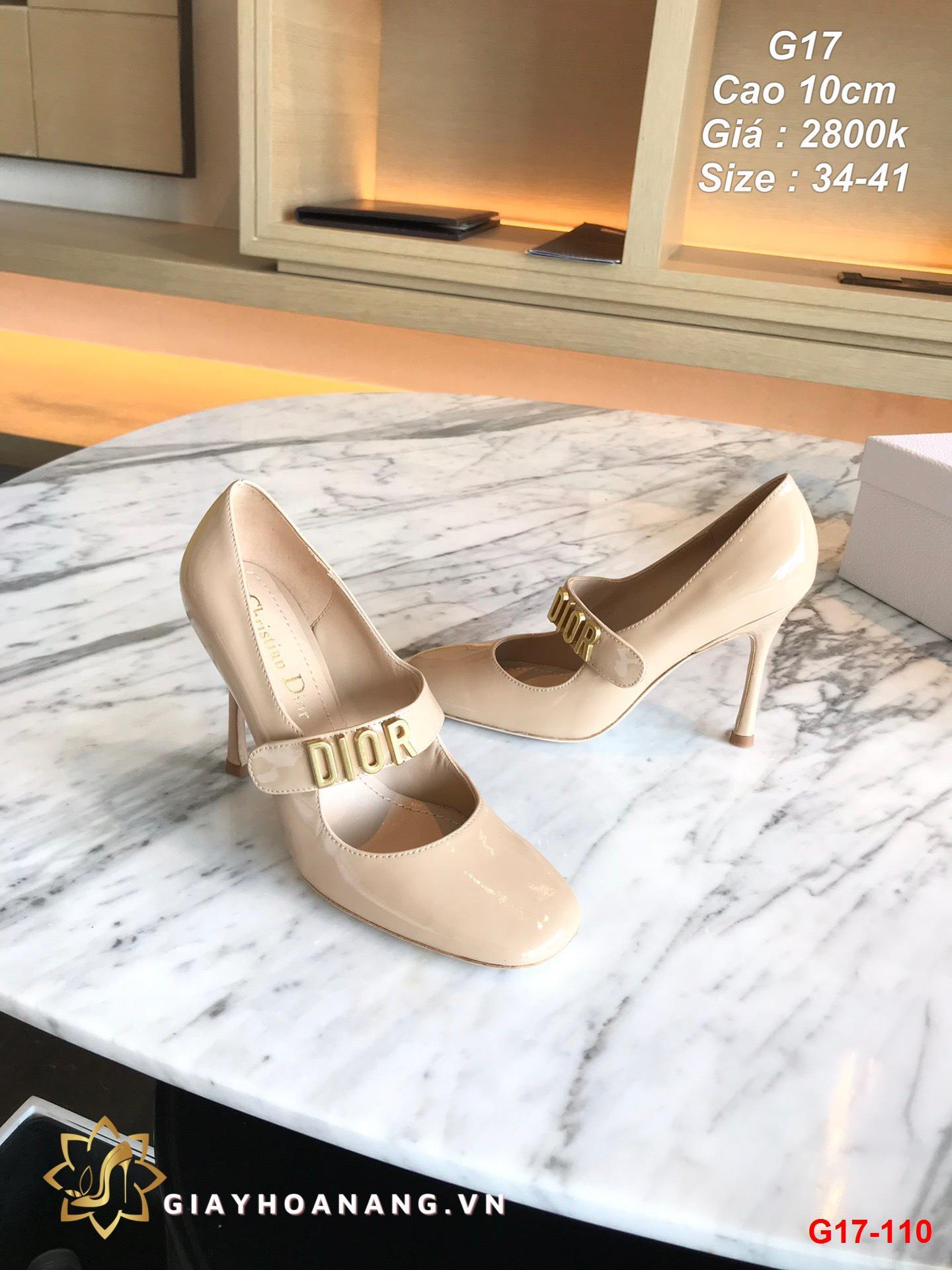 G17-110 Dior giày cao 10cm siêu cấp