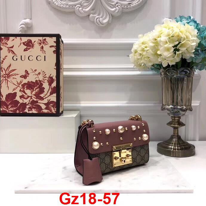 Gz18-57 Gucci túi size 20cm siêu cấp