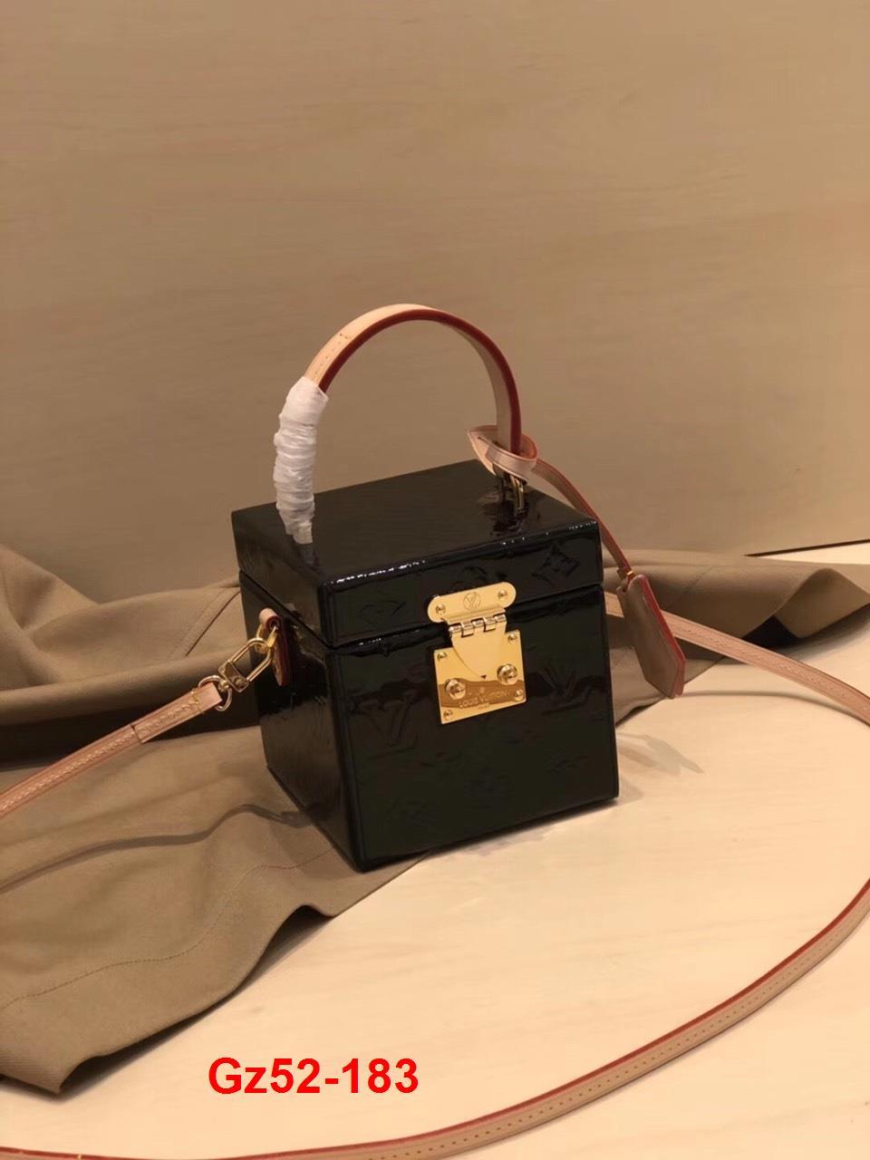 Gz52-183 Louis Vuitton túi size 12cm siêu cấp
