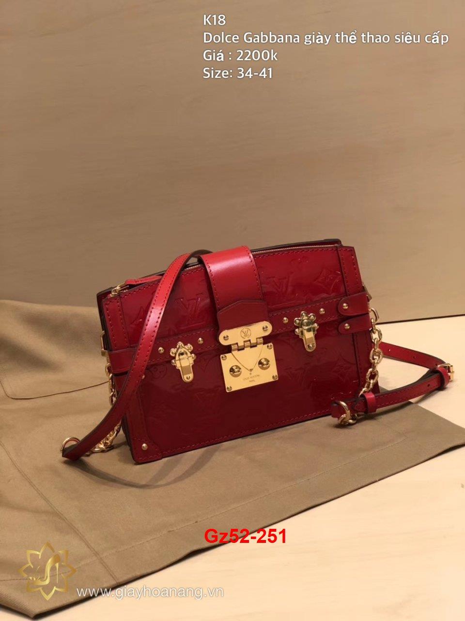 Gz52-251 Louis Vuitton túi size 20cm siêu cấp