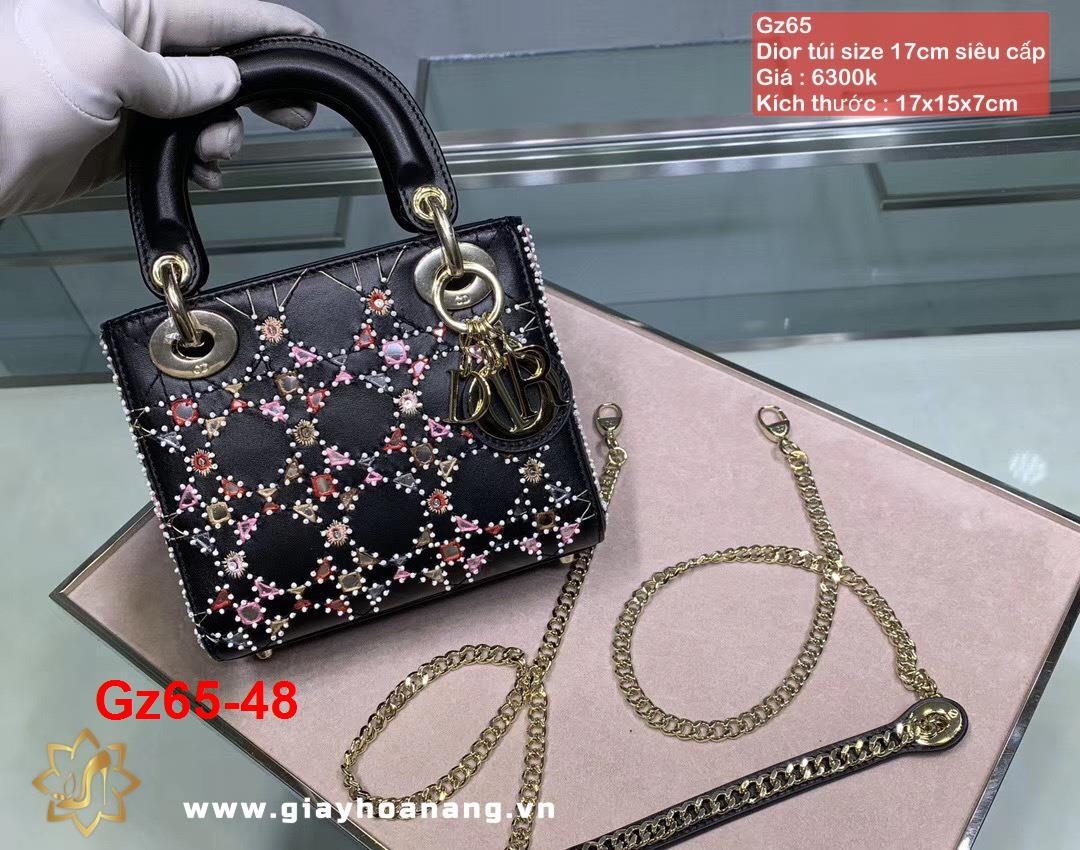 Gz65-48 Dior túi size 17cm siêu cấp