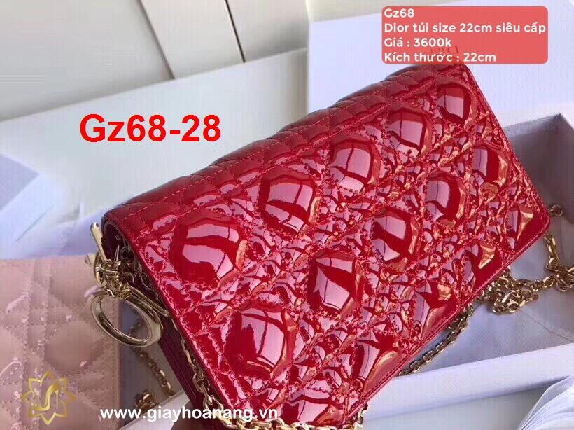 Gz68-28 Dior túi size 22cm siêu cấp