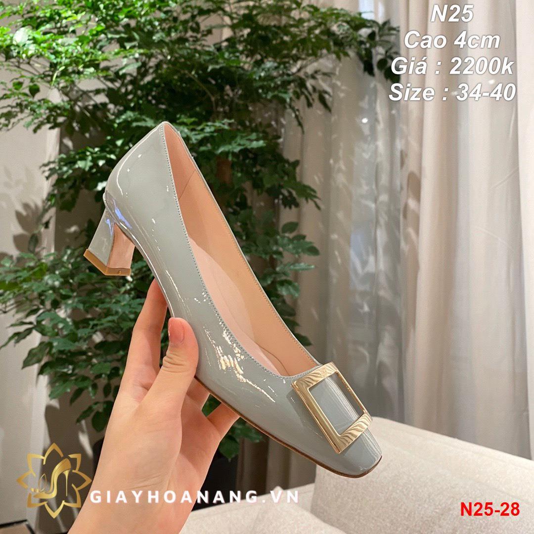 N25-28 Roger Vivier giày cao 4cm siêu cấp