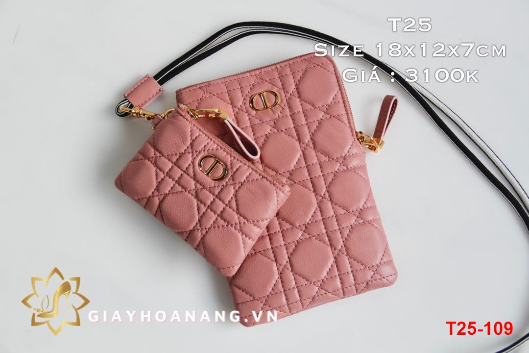 T25-109 Dior túi size 18cm siêu cấp