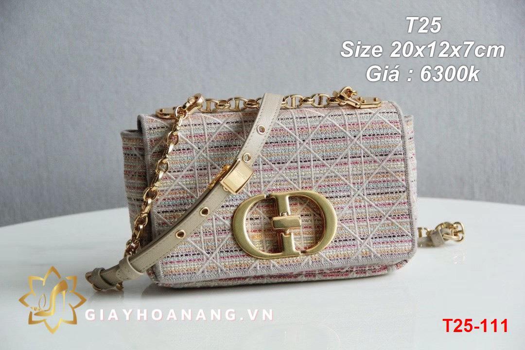 T25-111 Dior túi size 20cm siêu cấp