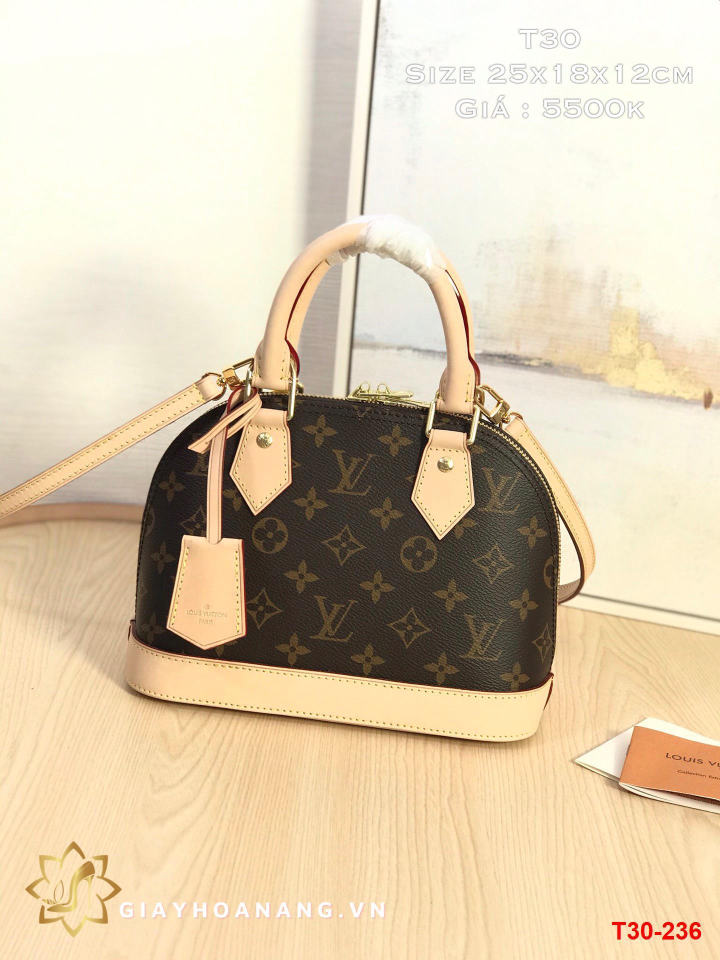 T30-236 Louis Vuitton túi size 25cm siêu cấp